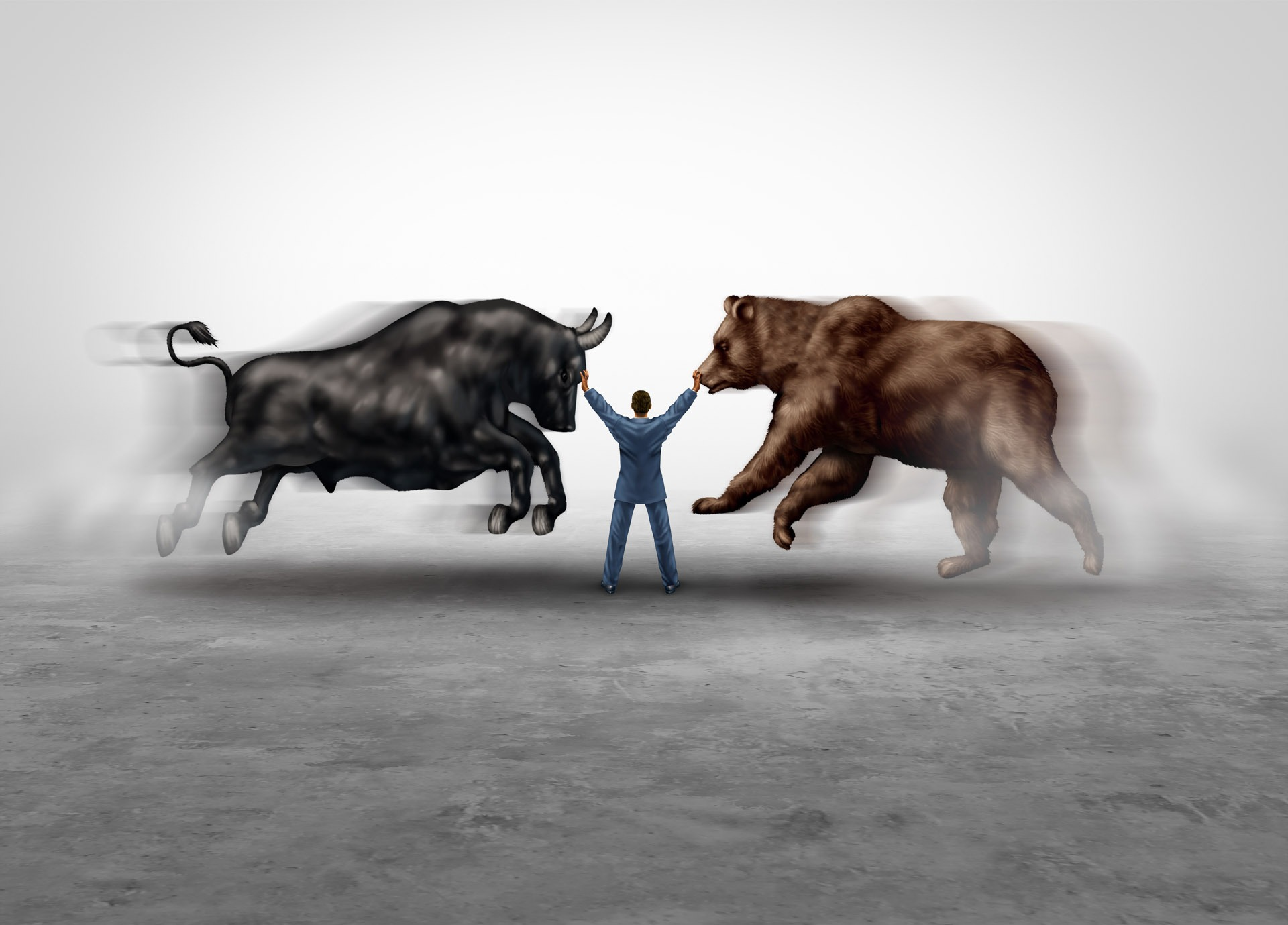 Difference Between Bull & Bear Markets